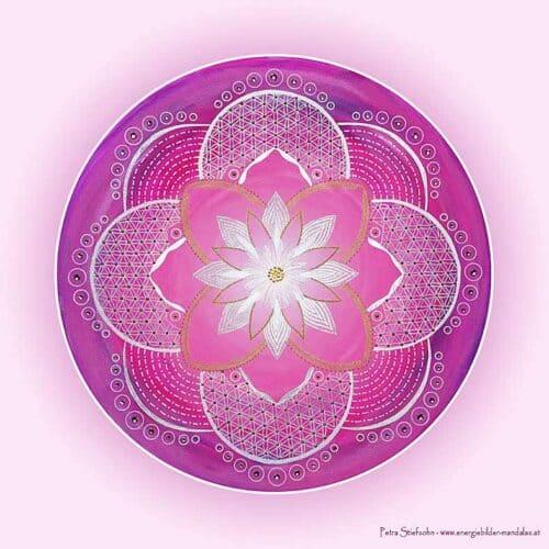 Die Energien dieses Mandalas unterstützen dich dabei den Engel in dir wieder zu erwecken. Besonders die Engel der Liebe und der Freude helfen dabei in dir dein eigenes Licht zum Strahlen zu bringen.